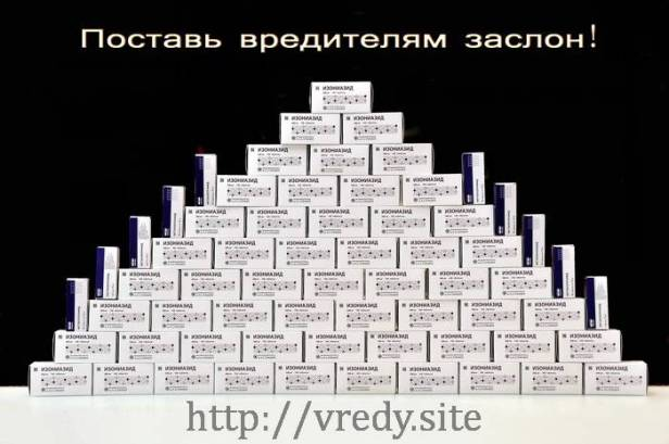 744a3e87373a1196d526f6f8eb49e28bb91913259391755