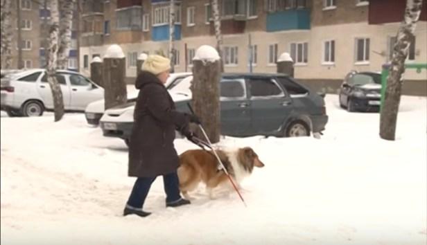 нов год анна александрова прогулка